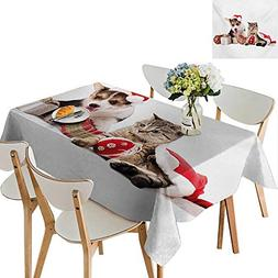 Modern Tablecloth,Dog and Cat in Santa Hats with Surprise Bo