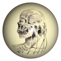 D&L Billiards  Skull in Hand Designer Cue Ball for Pool Play